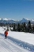 thumbs Langlauf mit Dolomitenpanorama (2) Bildergalerie