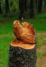 thumbs rinder 12 Impressioni dalla foresta incantata