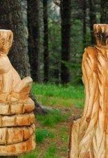 thumbs rinder 25 Impressioni dalla foresta incantata